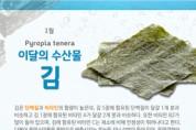 입맛 돋우는 겨울 별미 '송어'와 '김'을 맛보세요